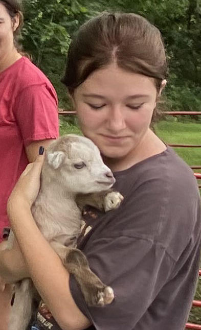 8 baby goat.jpg
