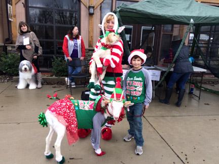 4. Best Horse goat web IMG_6313.jpg