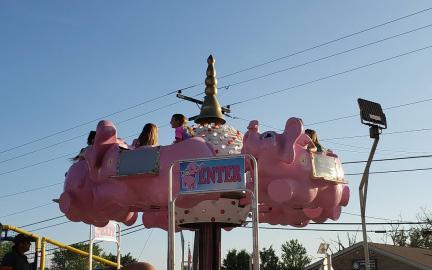 pink elephants.jpg