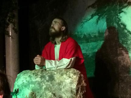 4. Jesus in the garden web IMG_7094.jpg